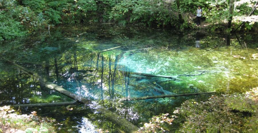 北海道、神の子池はビックリするような綺麗な色の水が見れるパワースポット